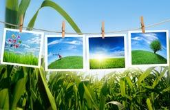 Het concept van de ecologie stock foto's