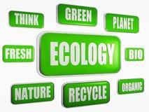 Het concept van de ecologie Stock Fotografie