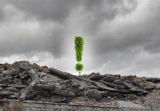 Het concept van de ecologie Royalty-vrije Stock Afbeeldingen