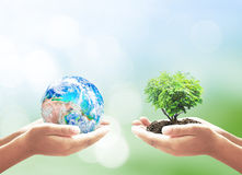 Het concept van de ecologie stock foto