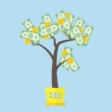 Het concept van de geldboom Royalty-vrije Stock Afbeelding