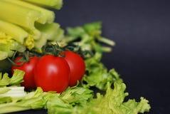 Het concept van de gezondheid en van het dieet Selderie en Tomaten over Donkere Achtergrond met exemplaarruimte royalty-vrije stock fotografie