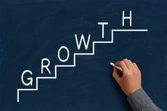 Het concept van de groei Stock Afbeelding