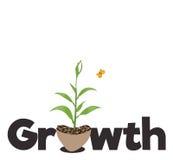 Het concept van de groei Royalty-vrije Stock Afbeelding