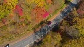 Het concept van de herfst Geïsoleerd Antenne van een weg onder heuvels met veel gele en rode gekleurde bomen wordt geschoten die  stock videobeelden