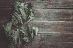 Het concept van de herfst Geïsoleerd Weinig droge eiken bladeren op oude houten lijst stock afbeelding