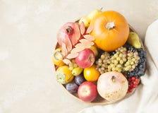 Het concept van het de herfstvoedsel stock afbeeldingen