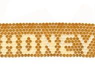 Het Concept van de honing Stock Foto's