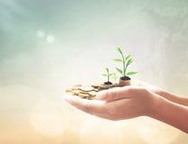 Het Concept van de investering Stock Foto