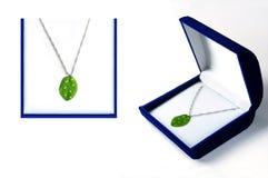 Het Concept van de Juwelen van Eco Royalty-vrije Stock Afbeeldingen