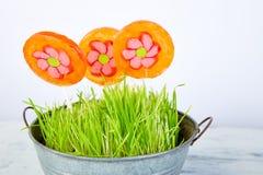 Het concept van de lente De bloem van de suikergoedlolly in bloempot met gras Royalty-vrije Stock Fotografie