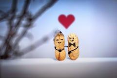 Het concept van de liefde Huwelijk Datum in de avond Creatieve hand - gemaakt die paar van noten wordt gemaakt Stock Foto