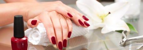 Het concept van de manicure Mooie woman& x27; s handen met perfecte manicure bij schoonheidssalon Stock Afbeeldingen