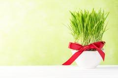 Het concept van de Nowruzvakantie - gras, baklavasnoepjes, noten en zaden stock afbeeldingen
