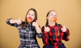 Het concept van de schoolsnack Tienerjaren met gezonde snack Vrolijke jonge geitjes die pret hebben en appelen eten Wij zijn op g stock foto
