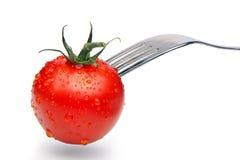 Het concept van de tomaat Stock Fotografie