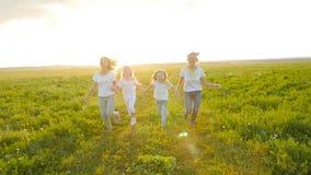 Het concept van de vriendschap Jonge gelukkige vrouwen met hun dochters die over het gebied bij zonsondergang lopen stock videobeelden