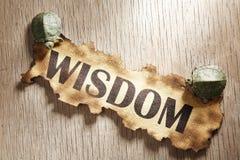 Het concept van de wijsheid stock foto