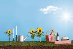 Het concept van de de zomertuin Stock Foto