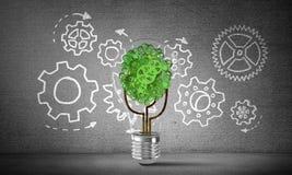 Het concept van Ecoinnovaties door middel van lightbulb Stock Foto's