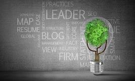 Het concept van Ecoinnovaties door middel van lightbulb Royalty-vrije Stock Afbeeldingen