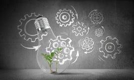 Het concept van Ecoinnovaties door middel van lightbulb Royalty-vrije Stock Afbeelding
