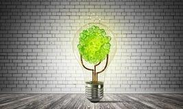 Het concept van Ecoinnovaties door middel van lightbulb Royalty-vrije Stock Foto's