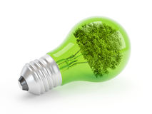 Het Concept van Ecologic Stock Fotografie