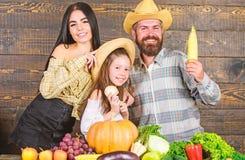 Het concept van het familielandbouwbedrijf Familielandbouwers met oogst houten achtergrond De ouders en de dochter vieren de herf royalty-vrije stock fotografie