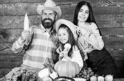 Het concept van het familielandbouwbedrijf Familielandbouwers met oogst houten achtergrond De ouders en de dochter vieren de herf stock foto