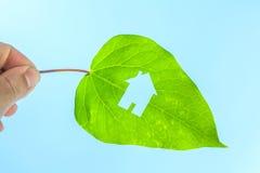Het concept van het Ecohuis Stock Afbeeldingen