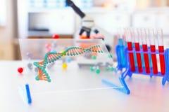 Het concept van het genetische biologielaboratorium Stock Foto