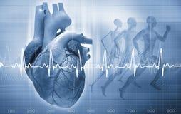 Het Concept van het hart Royalty-vrije Stock Foto's