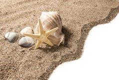 Het concept van het strand Stock Afbeeldingen