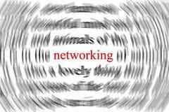 Het concept van het voorzien van een netwerk Stock Afbeelding