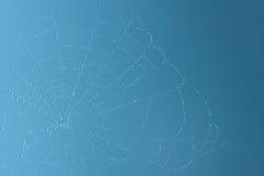 Het concept van het Web Stock Foto's