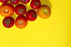 Het concept van het voedsel Rode tomaten Royalty-vrije Stock Afbeelding