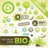 Het conceptenelementen van Eco Royalty-vrije Stock Afbeeldingen