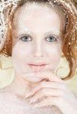 Het conceptenportret van de de winterfee Royalty-vrije Stock Foto