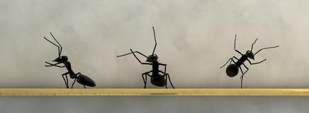 het conceptenwerk, team van mieren stock illustratie