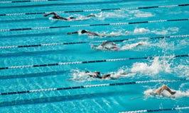 Het concurrerende Zwemmen Stock Afbeeldingen