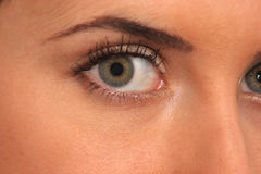 Het contact van het oog stock afbeeldingen