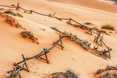 In het Coral Pink Sand Dune National-park Stock Afbeeldingen