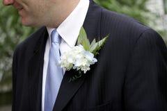 Het Corsage van bruidegoms Stock Fotografie