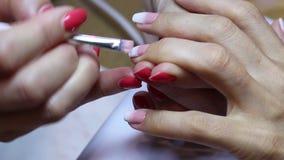 Het creëren van een gradiënt met een borstel op vrouwelijke spijkers Close-upmening van handen en vingers Mooi spijkerart. stock videobeelden