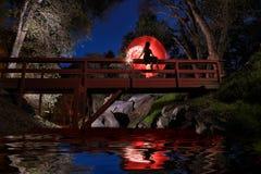 Het creatieve Lichte Schilderen met de Verlichting van de Kleurenbuis met Landschappen Royalty-vrije Stock Foto