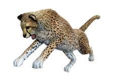 het 3D Teruggeven Grote Cat Cheetah op Wit Royalty-vrije Stock Afbeelding