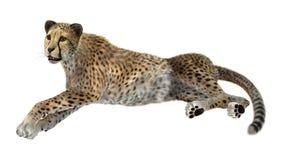 het 3D Teruggeven Grote Cat Cheetah op Wit Stock Fotografie