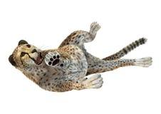 het 3D Teruggeven Grote Cat Cheetah op Wit Royalty-vrije Stock Fotografie