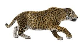 het 3D Teruggeven Grote Cat Jaguar op Wit Stock Afbeelding